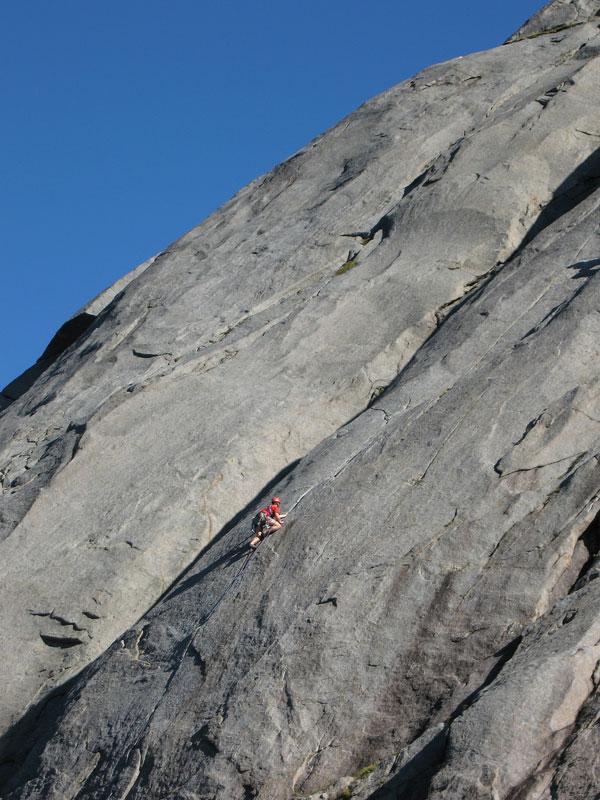 Bare Blåbær in Djupfjord, Lofoten